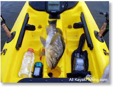 kayak fishing calico bass, Fish Finder