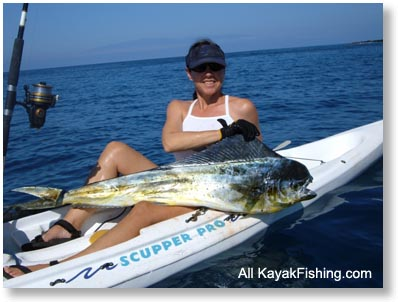 Mahi Mahi Fish on Note What A Beautiful Looking Fish Also Called Dorado Dodo